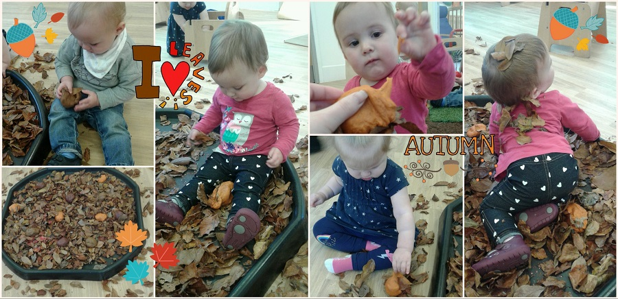 In the baby room we have been exploring the season of autumn. We collected lots of leaves that had fallen from the trees outside and put them into a tray.
