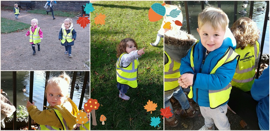 Today we decided to go on a lovely autumn walk in a group, taking the Babies Toddlers and Pre-school one children out together.