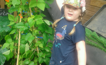 Hinckley – Growing our own beanstalk