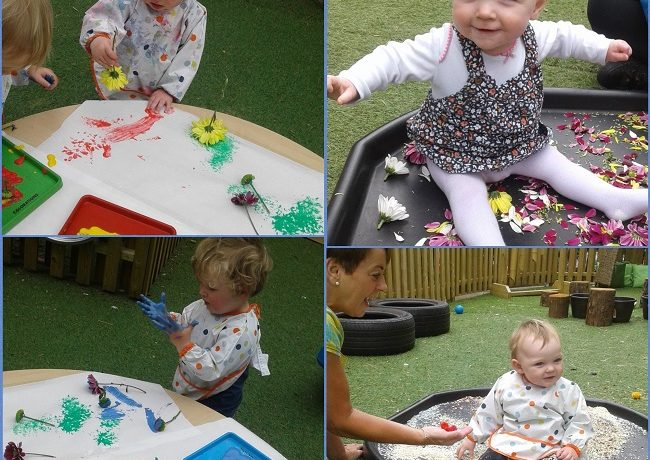 Worcester – Babies and toddlers host gardening stay and play
