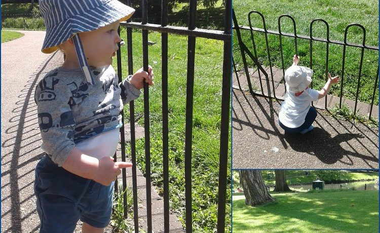 Worcester – Babies take a trip to the park