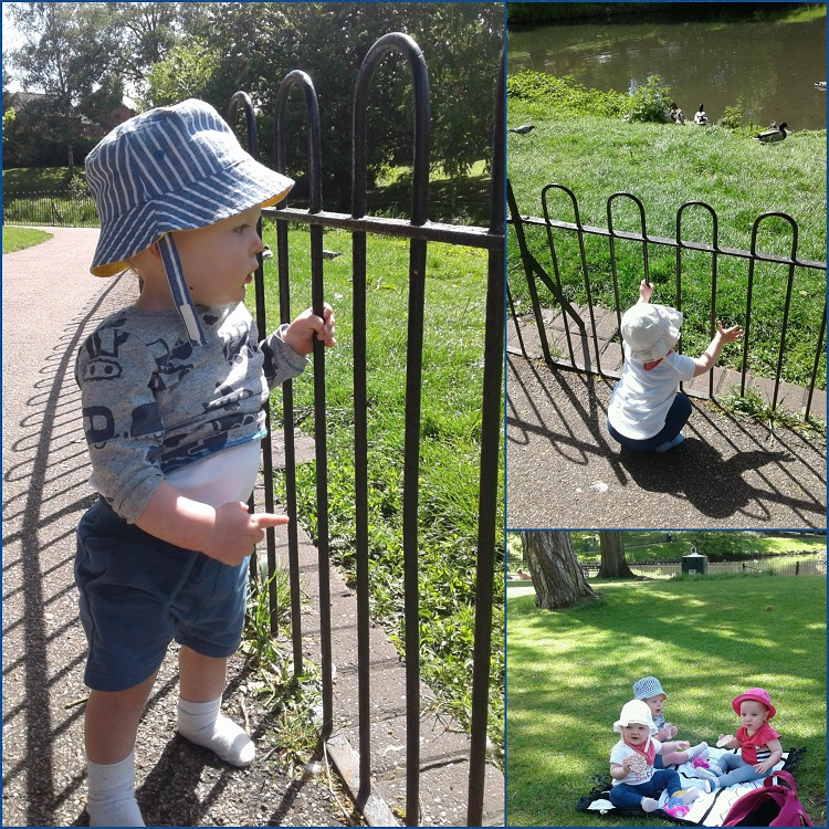 The babies had lots of fun exploring the park, going on the slide and the swings with support and praise from their carers.
