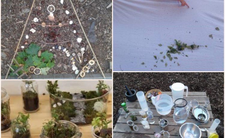Stourbridge – Staff training: Learning Through Nature