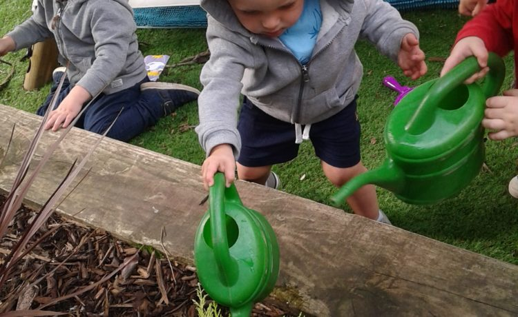 Hinckley – Green-fingered Toddlers!