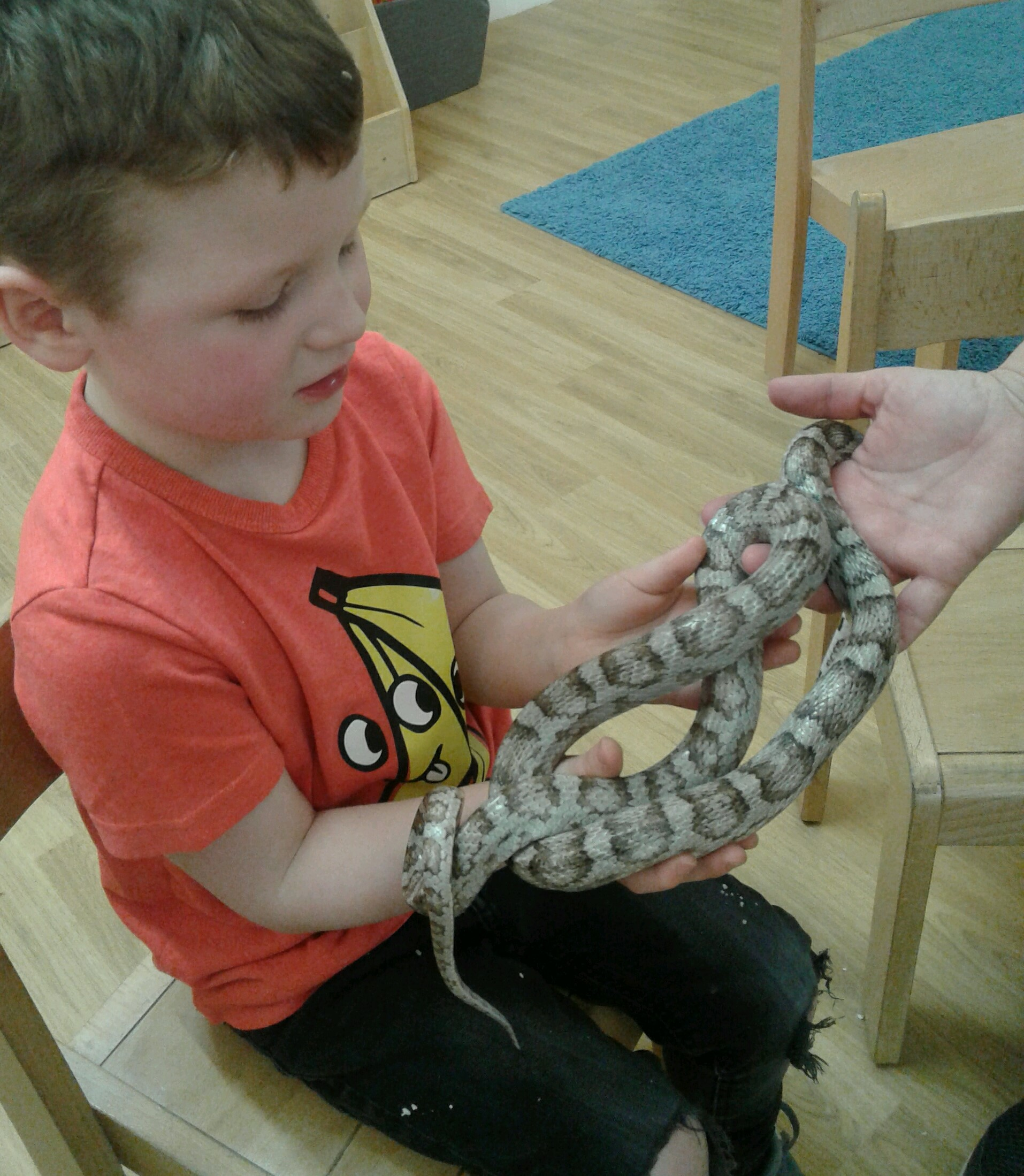 The children were really excited to meet Sarah from Animaltastics and all the amazing animals she had brought with her.