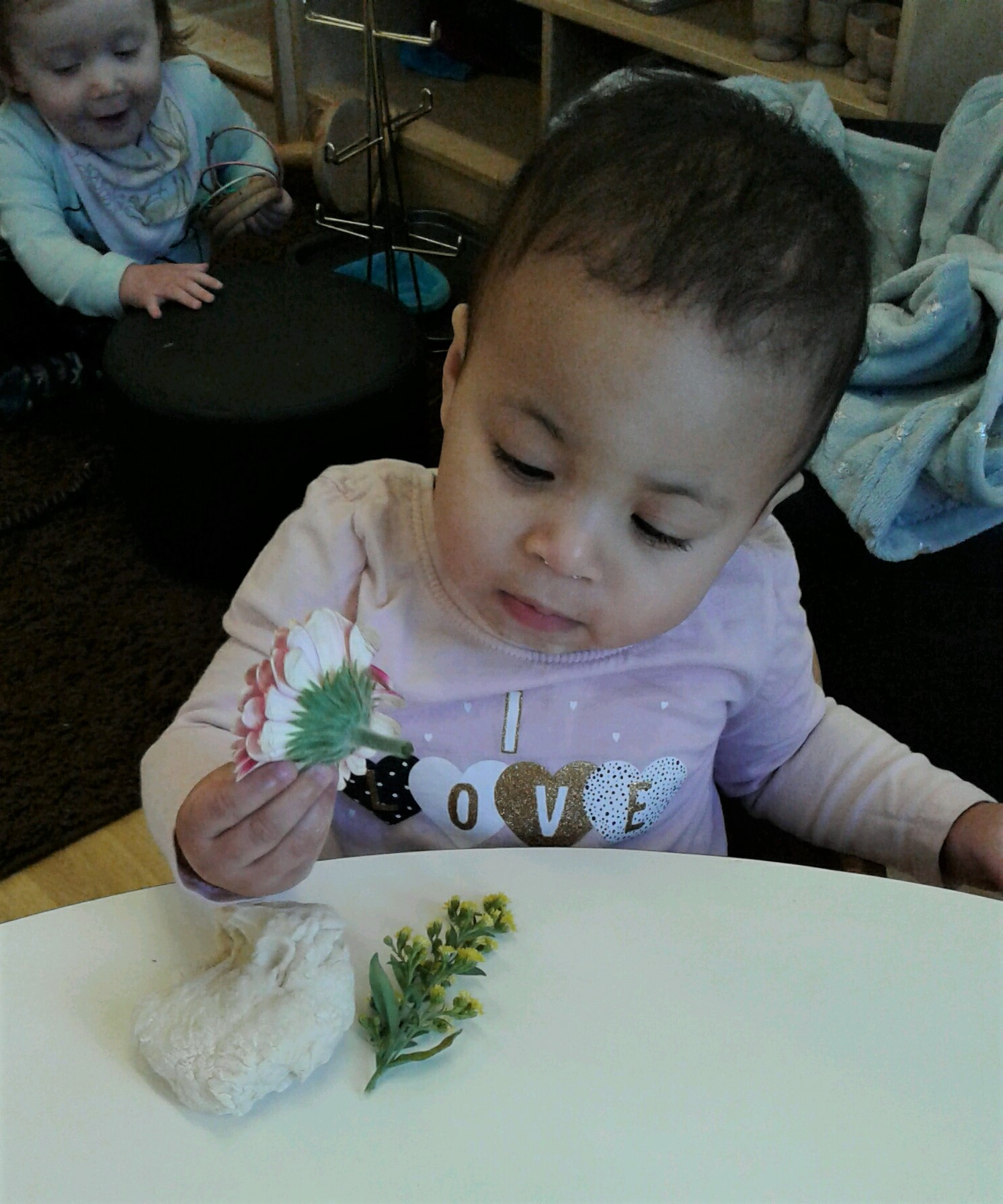 The Babies have had a wonderful time exploring different natural objects and what they can do with playdough.