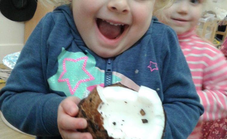 Hinckley – Pre- School 2 Investigate The Curiosity Cube