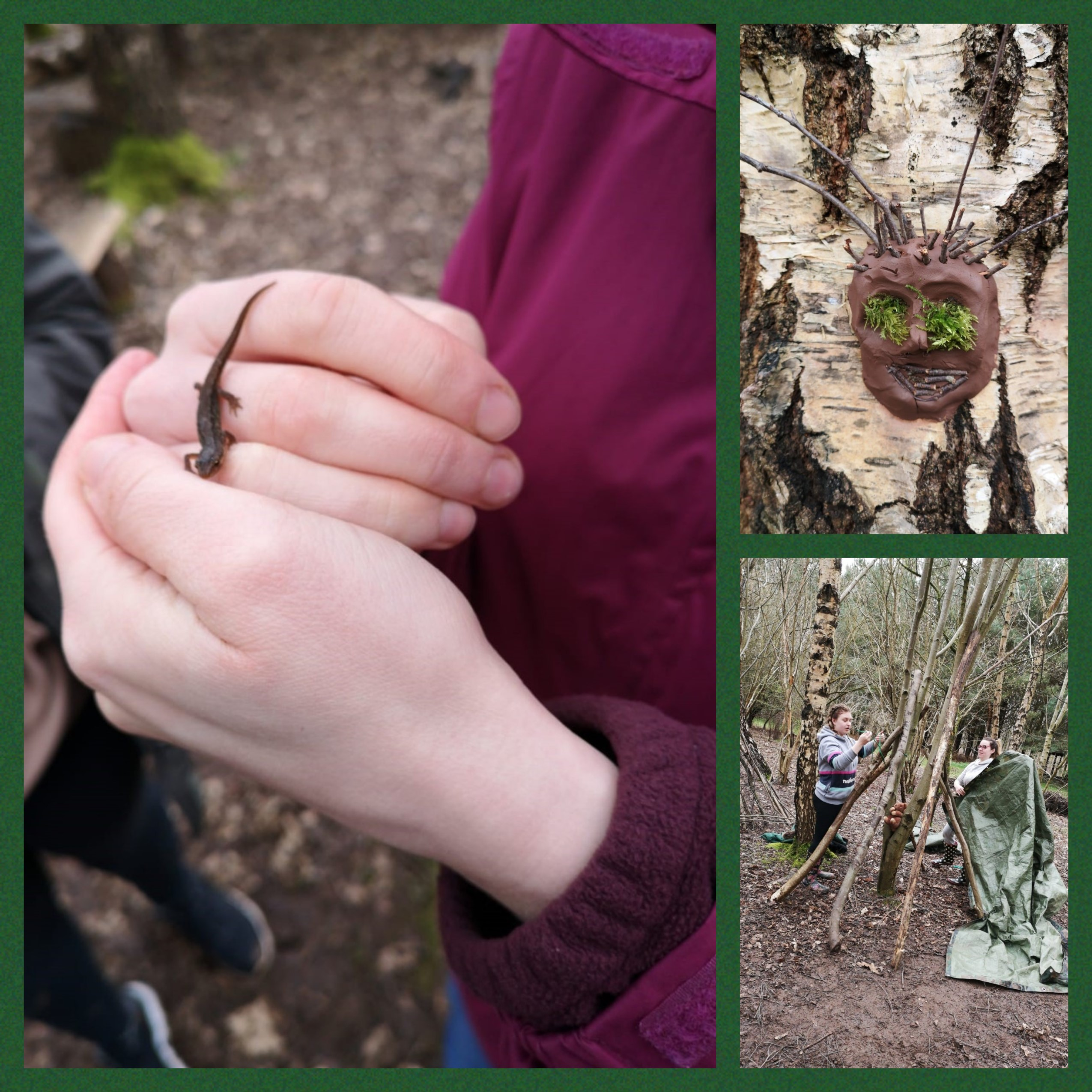 As part of the on going training and development at Shooting Stars, this Saturday staff from each of our nurseries took part in an amazing training opportunity at a unique field studies centre called Bishops Wood in Worcestershire.