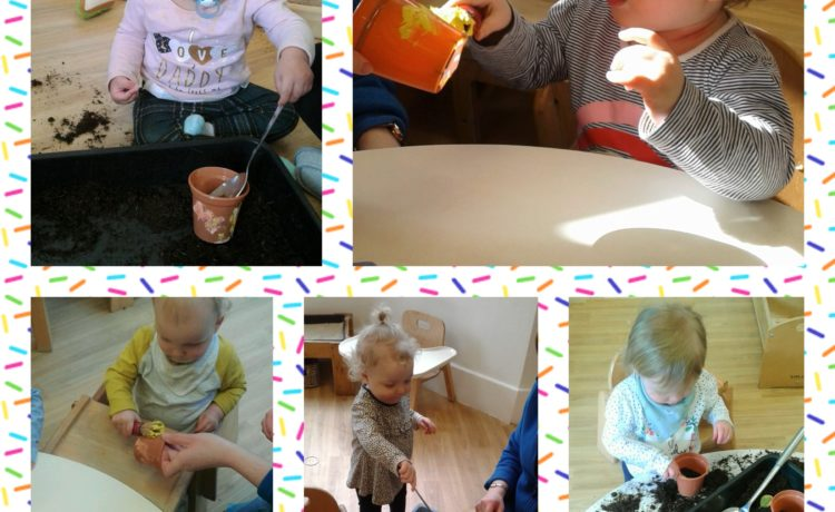Hinckley – Babies Mother's Day Plant Pots