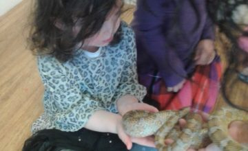 Last week the children in Pre-school enjoyed a wonderful visit from the animal lady.