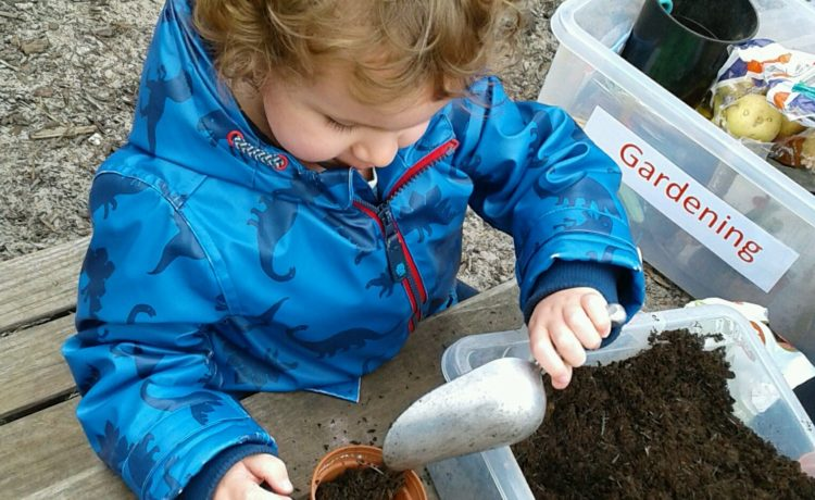 Stourbridge – Outdoor Planting Seeds