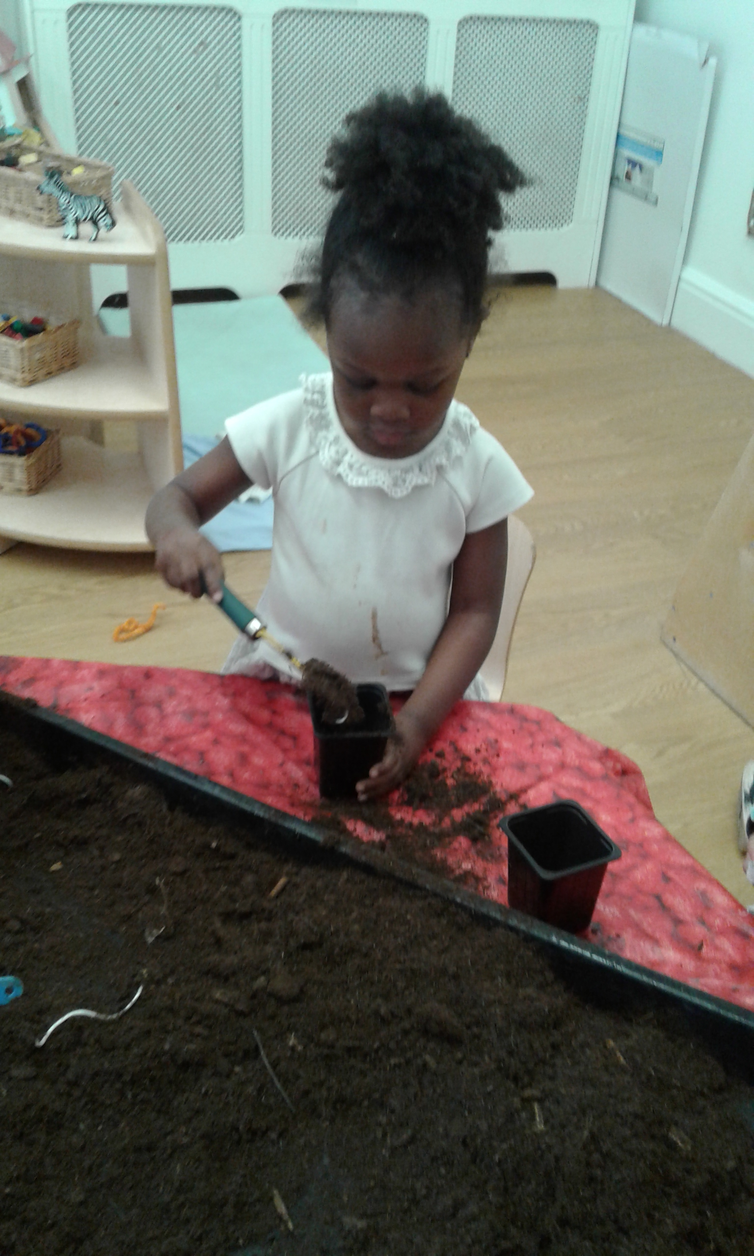 The children have shown great interest in exploring nature and living things