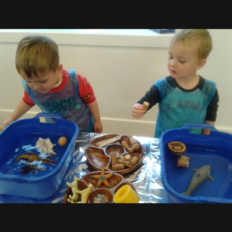 Preschool 2 have been investigating objects that sink and objects that float