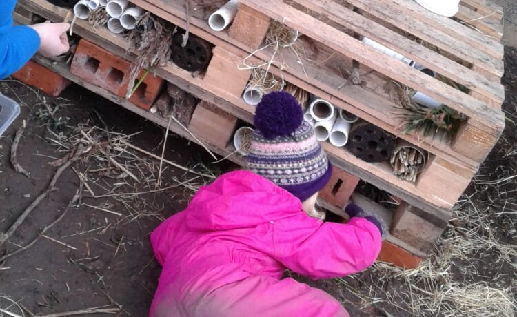 Worcester – Our Bug Hotel