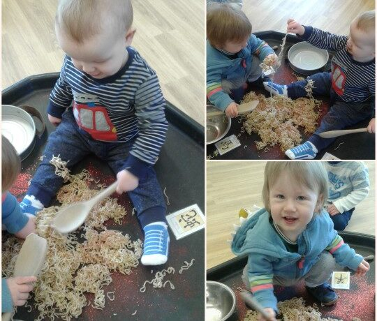 Hinckley – The babies explore Chinese New Year