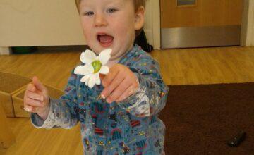 We have been exploring flowers through sensory play