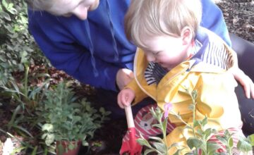 The babies have really enjoyed planting their home-grown seedlings