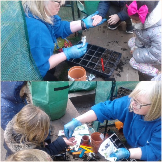 Preschool 2 have been digging and planting carrots and runner beans to grow in our greenhouse and exploring loose parts