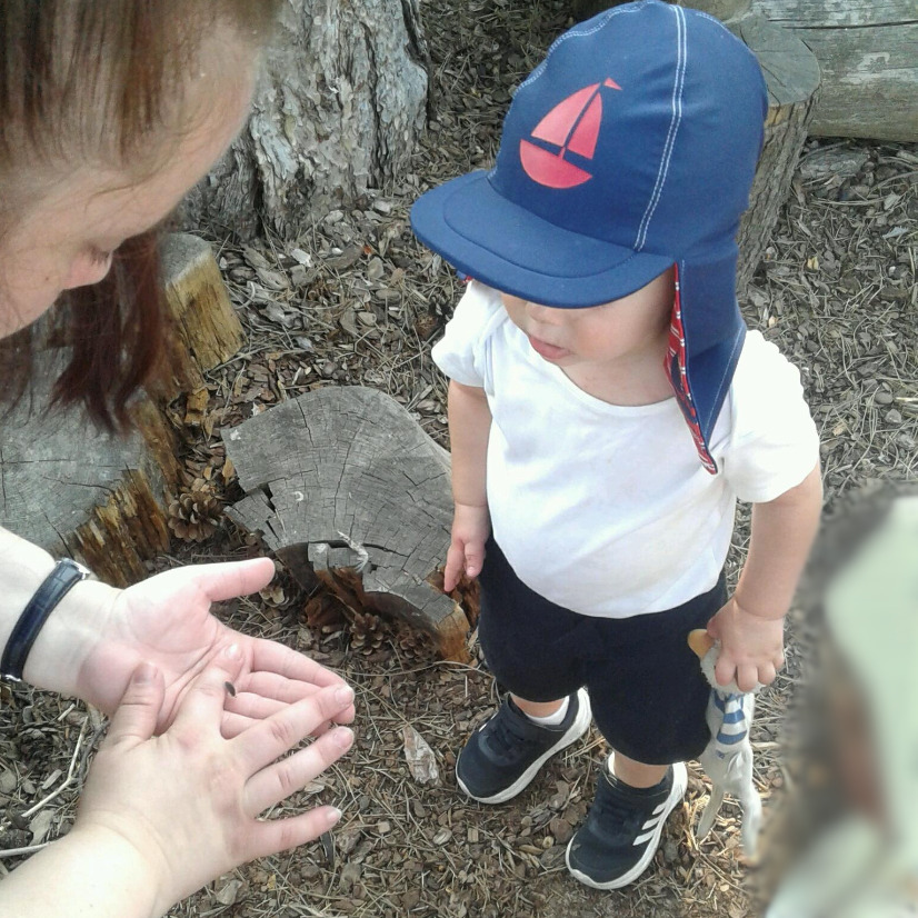 The Pretoddlers explored the woodland area