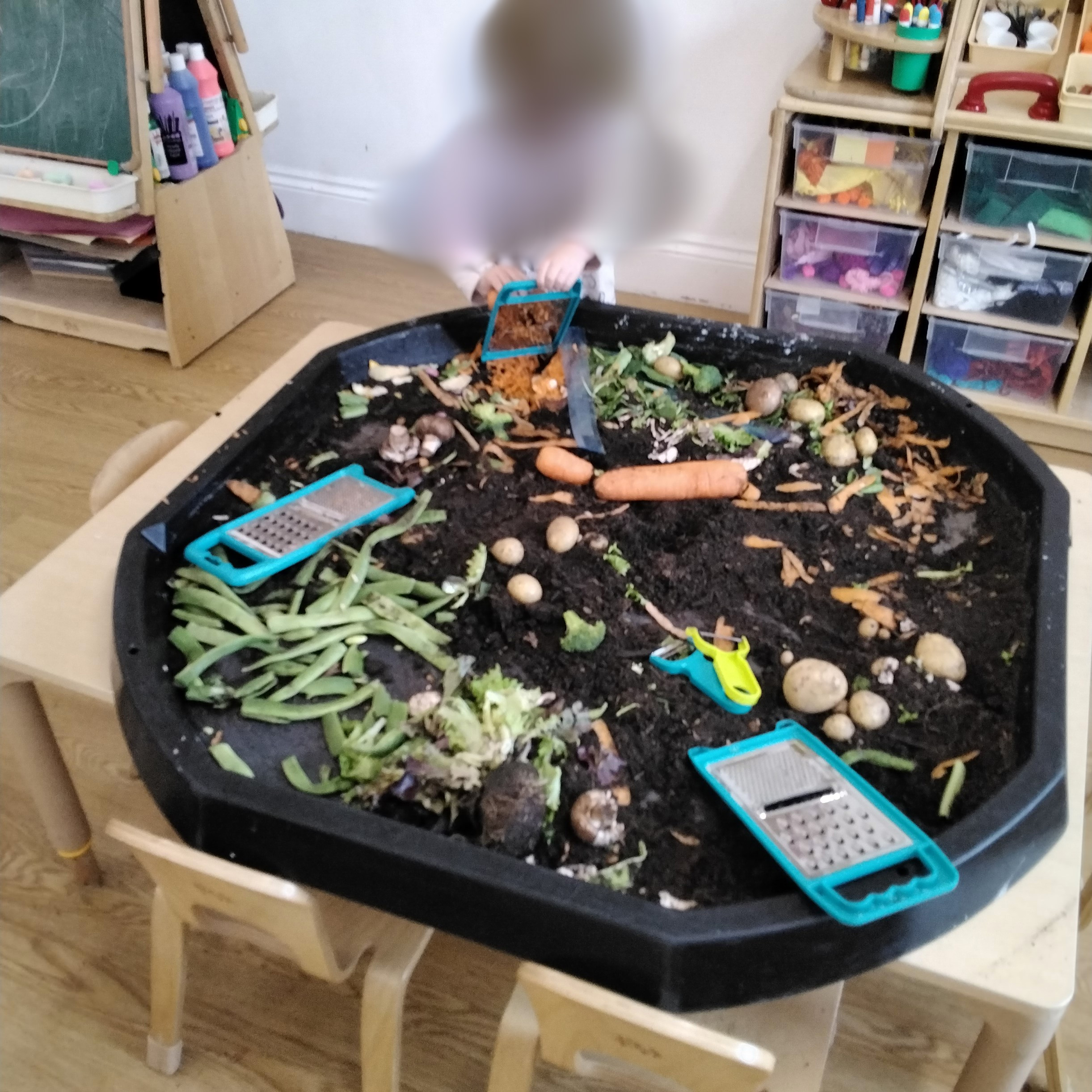 We turned our creative area into an allotment